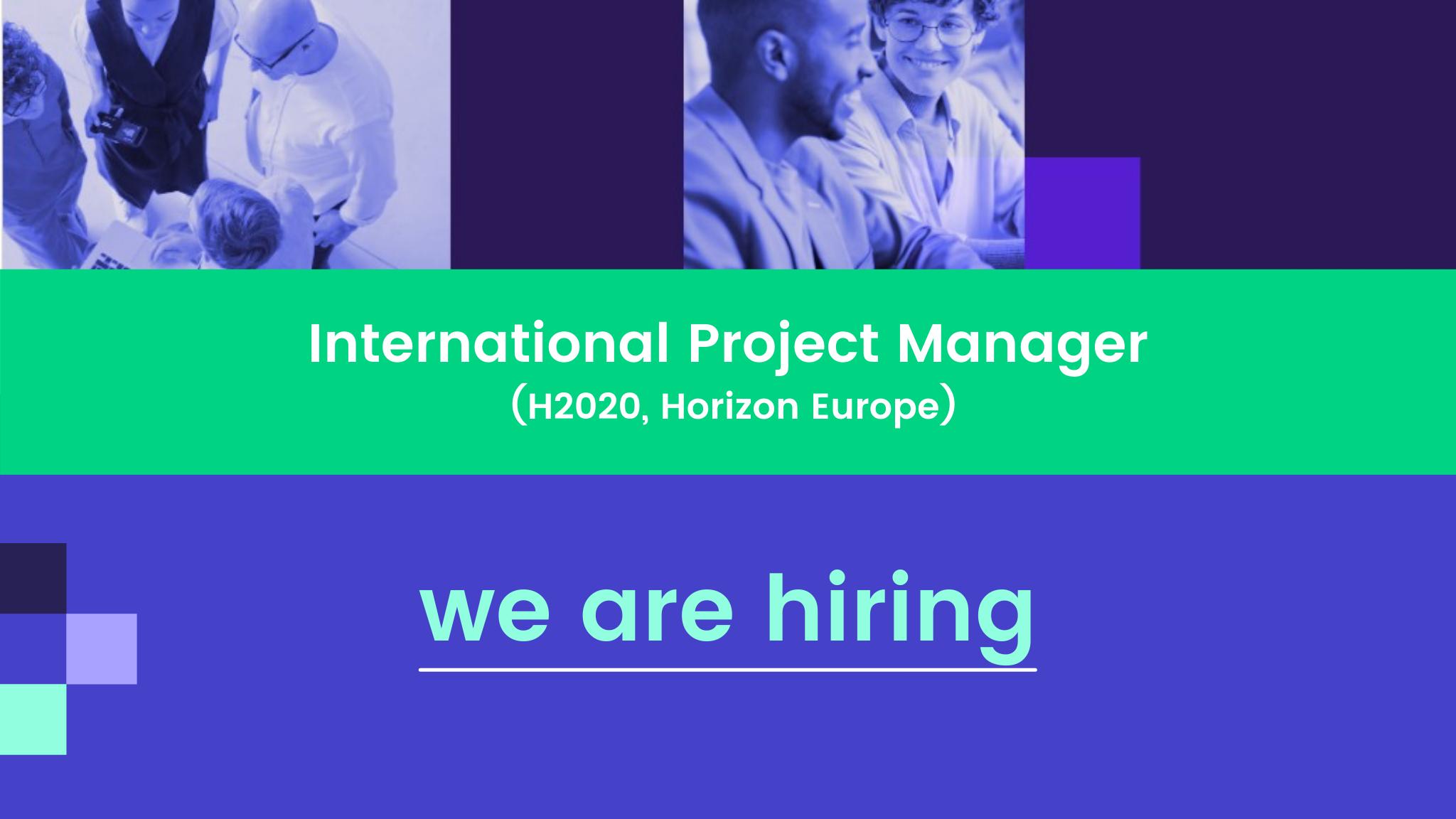 Datawizard - International Project Manager